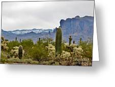 The Superstitions  Landscape Greeting Card