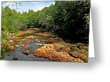 The Swift River In South Tamworth Greeting Card