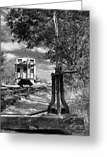 The Switch And The Caboose Greeting Card
