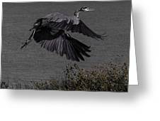 The Take Off Greeting Card