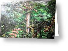 The Tapang Tree Greeting Card