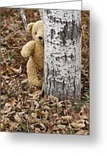 The Teddy Bear In The Woods Greeting Card