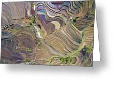 The Terraces Of Yuanyang China Greeting Card