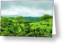 The Terrain Of Costa Rica  Greeting Card