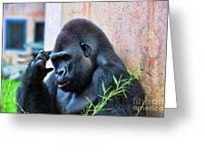 The Thinking Gorilla Greeting Card