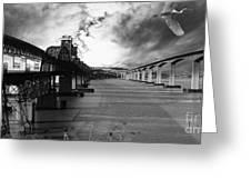 The Three Benicia-martinez Bridges . A Journey Through Time . Black And White Greeting Card