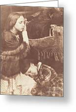 The Three Sleepers: Sophia Finlay, Harriet Farnie And Brownie Greeting Card