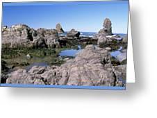 The Tidepools Of Bear Harbor Greeting Card