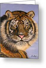 The Tiger, 16x20, Oil, '08 Greeting Card