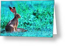 The Tortoise And The Hare . Cyan Greeting Card by Wingsdomain Art and Photography