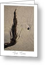 The Toss Greeting Card by Peter Tellone