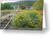 The Tracks At Pagosa Junction Greeting Card