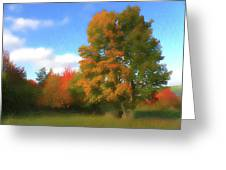 The Transition From Summer To Fall. Greeting Card