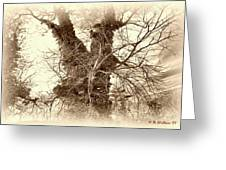 The Tree - Sepia Greeting Card