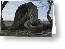 The Tree Creature Greeting Card
