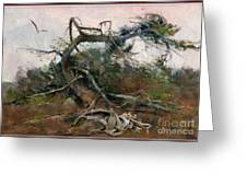 The Tree Gave Its Branches 4 Greeting Card