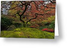 The Tree In Spring Greeting Card
