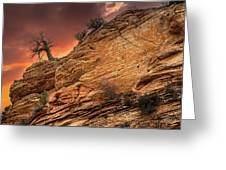The Tree Of Zion Greeting Card