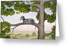 The Tree Whippet Greeting Card