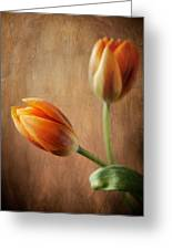 The Tulips Greeting Card