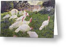 The Turkeys At The Chateau De Rottembourg Greeting Card
