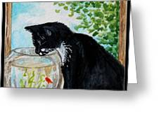 The Tuxedo Cat And The Fish Bowl Greeting Card