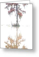 The Upside Down In Color Greeting Card