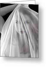 The Veil Greeting Card