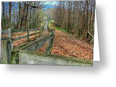 The Walk In The Woods Greeting Card