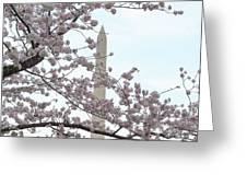 The Washington Monument At The Cherry Blossom Festival Greeting Card