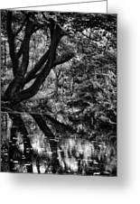 The Water Margins - Monochrome  Greeting Card