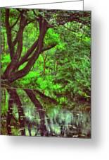 The Water Margins - Nutclough Woods Greeting Card