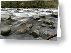 The Way A River Flows Greeting Card
