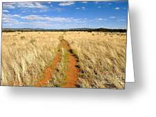 The Westward Trail Greeting Card