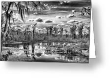 The Wetlands Greeting Card