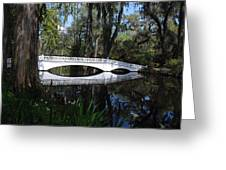 The White Bridge In Magnolia Gardens Charleston Greeting Card
