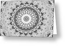 The White Kaleidoscope No. 2 Greeting Card