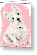 The White Pooch Greeting Card