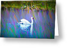 The White Swan Greeting Card by Bill Cannon