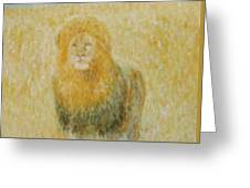 The Wild  Lion Greeting Card