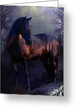 The Wild Mare Greeting Card