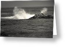The Wild Pacific In Black And White Greeting Card