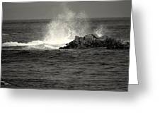 The Wild Pacific In Black And White Two Greeting Card