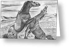 The Wild West Mustangs Greeting Card