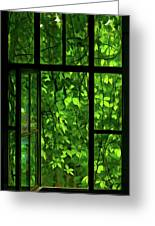 The Window Greeting Card by Dale Jackson