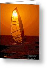 The Windsurfer Greeting Card