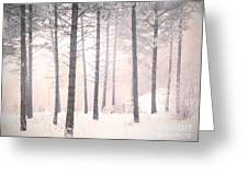 The Winter Forest Greeting Card
