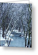 The Winter Stream  Greeting Card