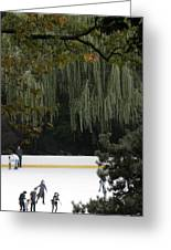 The Wollman Rink Greeting Card