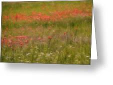 The Wonders Of Spring Greeting Card